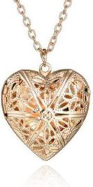 Goudkleurige hart medaillon - ketting met hart die open kan
