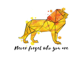 Postkaart | Don't forget who you are