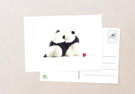 Postkaart | Panda