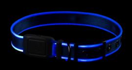 Night Dog Lichtgevende LED Honden Halsband Blauw - Maat S