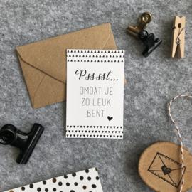 Mini kaartjes met kraft envelop- pssst...omdat je zo leuk bent - 2 stuks - Studio Thoés