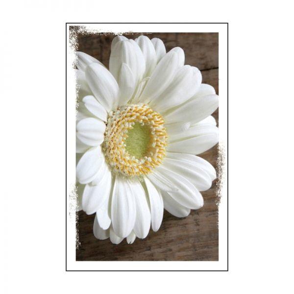 08 Geurzakje met envelopje - Blanco - Naturelle serie