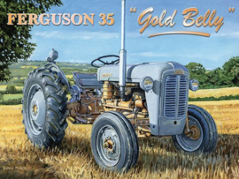 Ferguson 35 Gold Belly