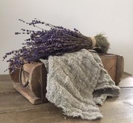 Inspiratie Tips Lavendel