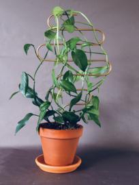 Plantensteun / Trellis (bocht)