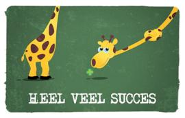 """Nieuw : Postkaart """"Heel Veel succes"""""""