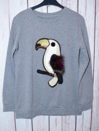 """Nieuw : Grijze trui """"vogel"""" Mt. 14 jaar"""
