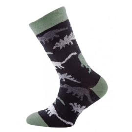 Nieuw : Dino sokken Ewers