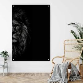 Zwart wit portret van een leeuw