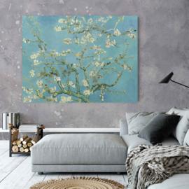 Amandelbloesem door Vincent van Gogh