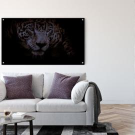 Angry jaguar