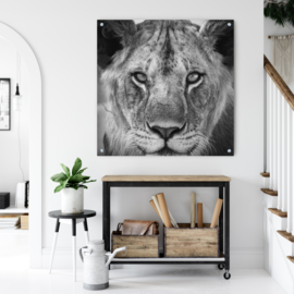 Leeuwin, de koningin van Afrika