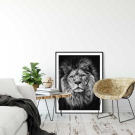Alpha lion poster