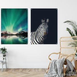 Dubbelzijdige kunst: Northern Lights met de Dark zebra