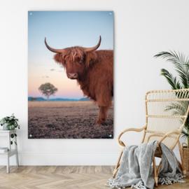Dubbelzijdige kunst: Highland cattle met de prachtige Pelikaan!