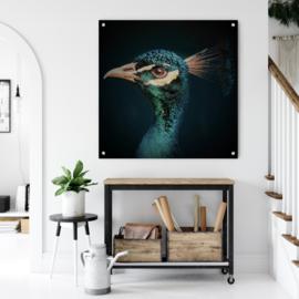 Peacock, vintage edition