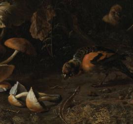 Dubbelzijdige kunst: Stilleven van Jan Davidzs de Heem met Dieren en planten van Melchior d'Hondecoeter