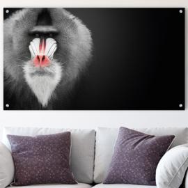 Mandrill aap tegen vintage zwarte achtergrond