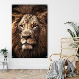 Leeuw, koning van Afrika
