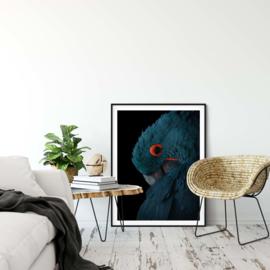 Blauwe papegaai poster