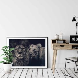 Poster leeuw zwart/wit