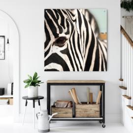 Zebra close up in natuurlijke omgeving