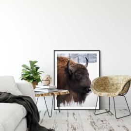 Poster bizon