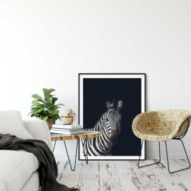 Dark zebra poster