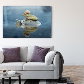 Schildpad en zijn vrienden