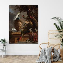 De menagerie, Melchior d'Hondecoeter op acrylglas, 80x60cm met ophangsysteem