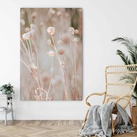 Bloeiend gras bij ondergaande zon (schilderij botanisch)