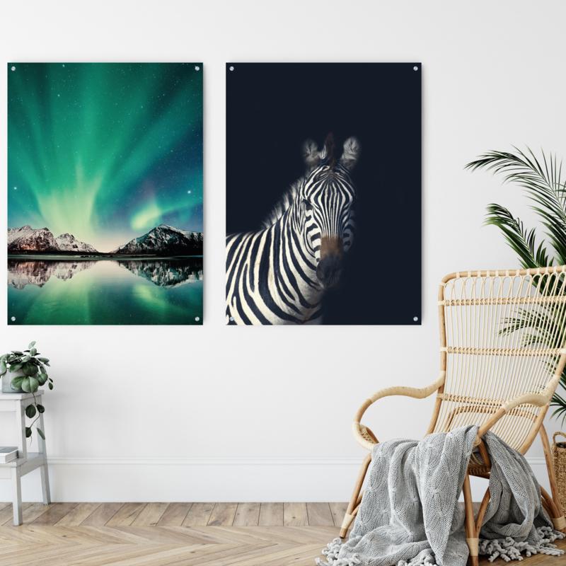 Dubbelzijdige kunst: Northern Lights met de Dark zebra