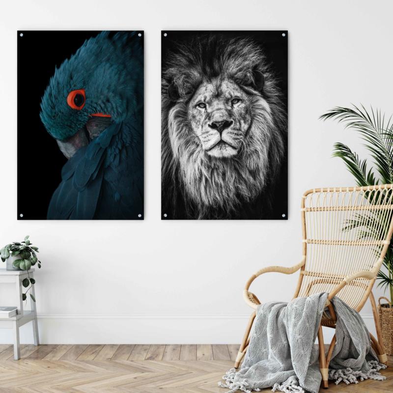 Dubbelzijdige kunst: Alpha lion met de prachtige blauwe Ara