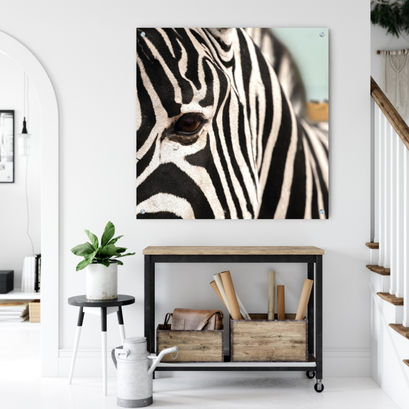 Wanddecoratie Natuurlijke Materialen.Wanddecoratie Zebra Kies Je Materiaal Aluminium Dibond Wil
