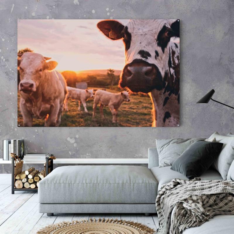 Weiland vol Hollandse koeien