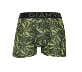 GIANVAGLIA® Heren Boxers Katoen 015