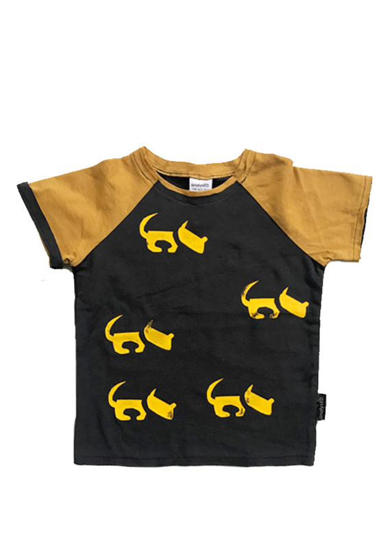 T-shirt Hond colour block