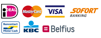 Payment options Euro Special Note