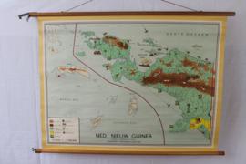 Schoolplaat Nederlands nieuw Guinea