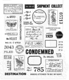 Field Notes (CMS396)