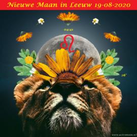 Nieuwe Maan in Leeuw - 19 augustus 2020
