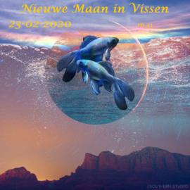 Nieuwe Maan in Vissen - 23 februari 2020
