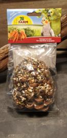 Dennenappel met zaden