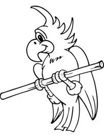 Uw vogel stapt niet op ?