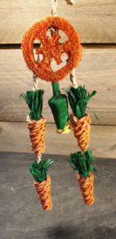 "Carrot ""Dream Catcher"""
