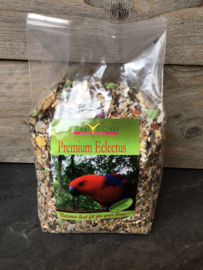 Vogel Jungle; Premium Eclectus