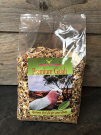 Vogel Jungle; Premium Galah