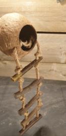 Cocosnoot met hangbrug