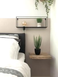 Aloe vera plant | Kunst