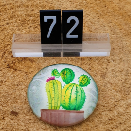 Switch Steen 30mm Cactus